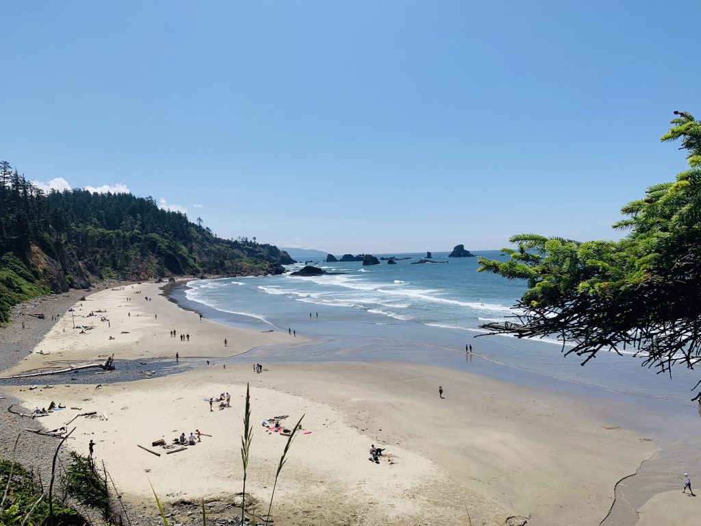 things to do in cannon beach: ecola state park